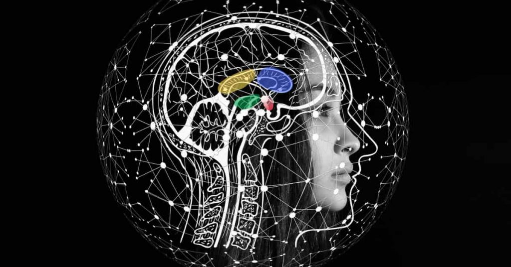 CBD intake is associated with lower subjective anxiety in people with SAD, probably due to changes of activity in lymbic and paralymbic brain areas.